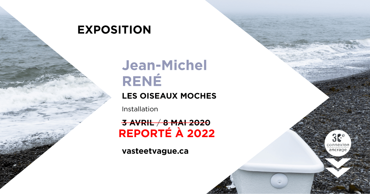 LES OISEAUX MOCHES | Installation Jean-Michel RENÉ