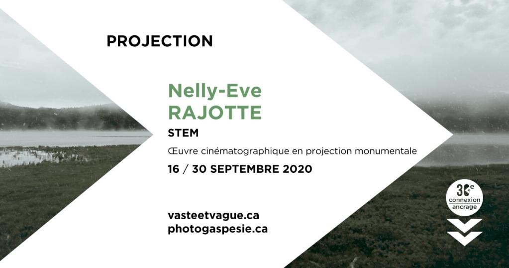 Nelly-Eve RAJOTTE   STEM   Œuvre cinématographique en projection monumentale