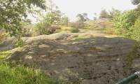 Klippor och träd på Henriksdalsbergets hundrastgård