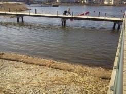 Skräpet borta i udden mellan Henriksdalshamnen och Lugnets terrass