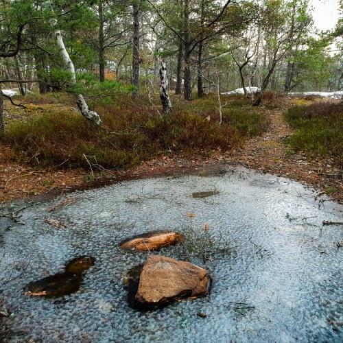 Is över kärren i Trolldalen i Nacka