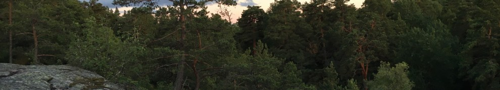 Urskogen Ryssbergen i Nacka