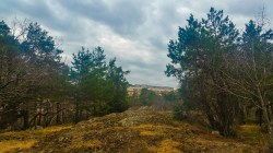 Utsikt från Trolldalen mot Henriksdalsringen (vår)