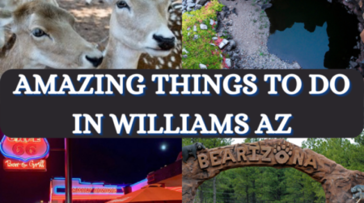Things To Do in Williams Az