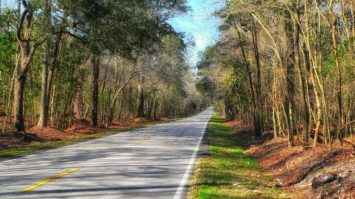 Things To Do In Anderson SC