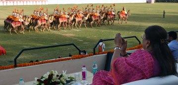Rajasthan Diwas Camel Show 2017