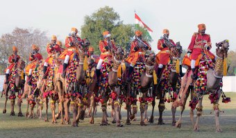 Camel Show Images on Rajasthan Diwas 2017