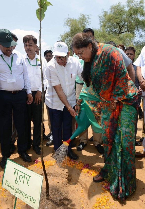 cm-inaugurated-van-mahotsav-by-planting-seeds-CMP_3729