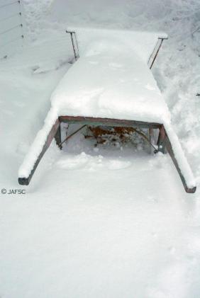 An old wheelbarrow