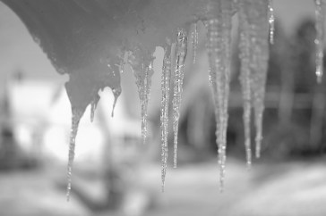 Icicle I in B&W