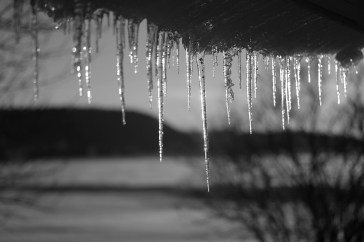Icicle II in B&W