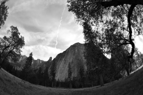 Yosemite VII
