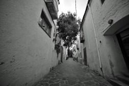 PAR_9526_888