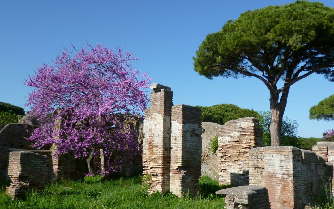 Ostia Antica – Full Day Excursion