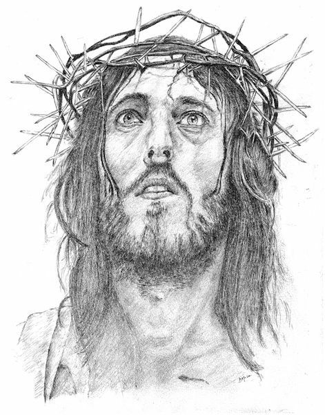 Crown Of Thorns Drawing : crown, thorns, drawing, Jesus, Crown, Thorns, DRAWING, Vaticanum.com