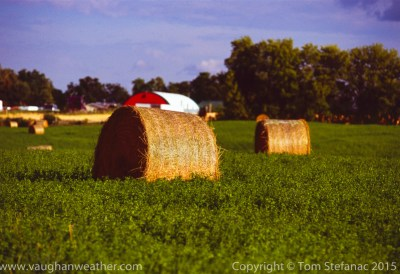 Hay bales in a green field during the long summer days of August – Fujichrome Velvia 100