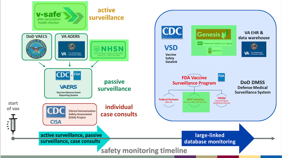 Many active and passive COVID-19 Vaccine Safety Monitoring Systems are in place.