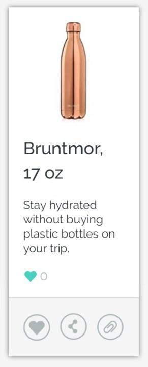 Bruntmor Thermos Bottle