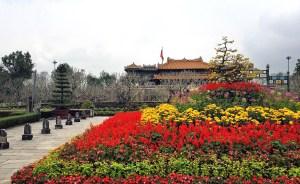 Hua Hin, Vietnam http://vaycarious.com/2017/02/01/flowers/