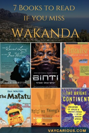 7 Books to read if you miss Wakanda from the Black Panther vaycarious.com