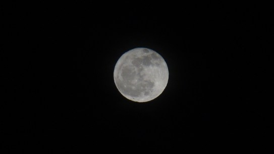 The best picture of the Moon I have ever taken.