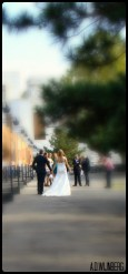 Kalemegdan Wedding 1