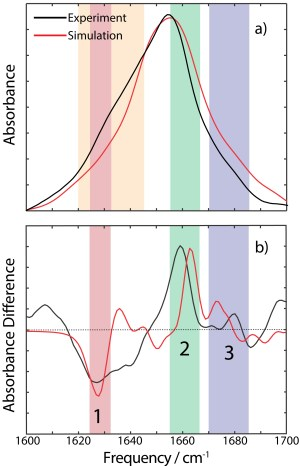 Comparison of the experimental and calculated spectra for KcsA in KCl buffer, a), and the difference spectra, b). Peaks 1, 2 and 3 are highlighted in red, green, blue respectively. The sidechain region is highlighted in orange; Sidechains were not included in the spectral modeling.