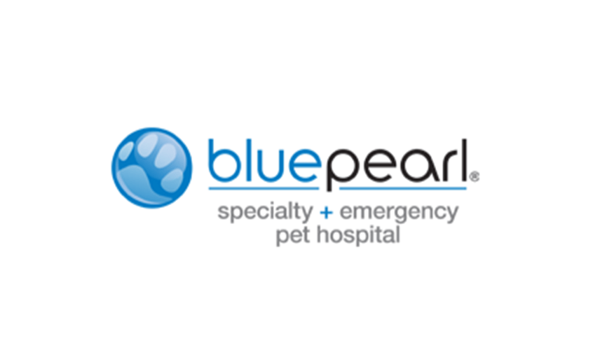 Image of: Bluepearl Sarasota Blue Pearl Yelp Community Partners In Spring Tx Vca Champions Northwest Animal
