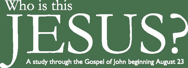 John_Series_Banner_Tease_Title