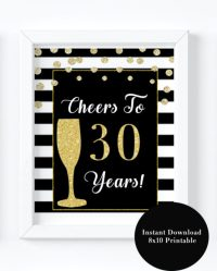 30th Birthday Party Decorations- Cheers to 30 years - VCDiy
