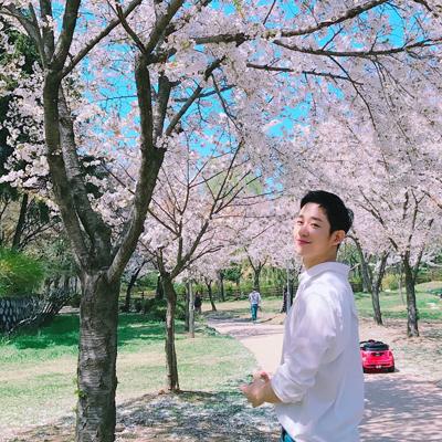 Son Ye Jin ngắm hoa anh đào cùngJung Hae In - 1