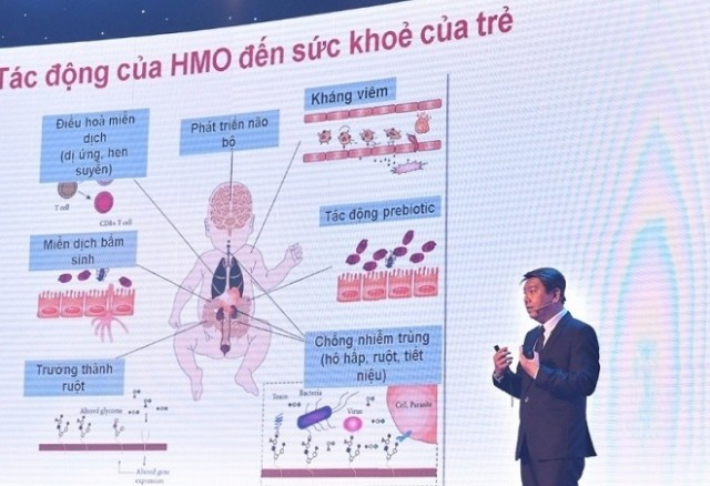 Chuyên gia chia sẻ về tác dụng của HMO.