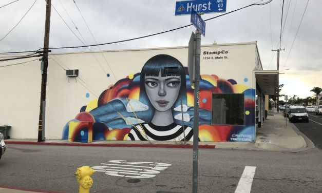 WALLS THAT SPEAK | Introducing the VCReporter's Mural Project