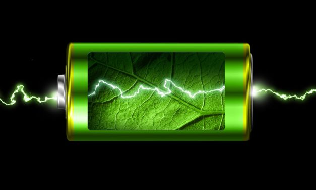 EYE ON THE ENVIRONMENT | Time to recharge after the holidays