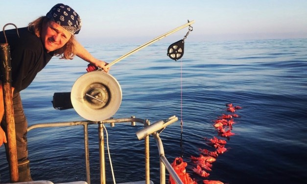 """""""Food security is right here"""" 