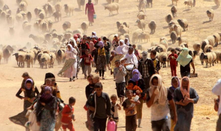 دعوة لإعادة الحياة للإيزيديين بعد القضاء على داعش