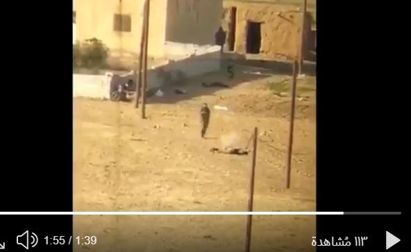 اعدامات ميدانية…. فيديو آخر يؤكد انتهاكات فصائل أنقرة