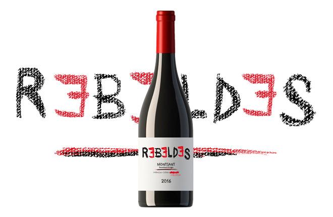 rebeldes montsant social wines