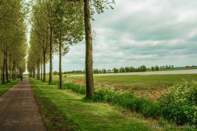 Dutch scene-2