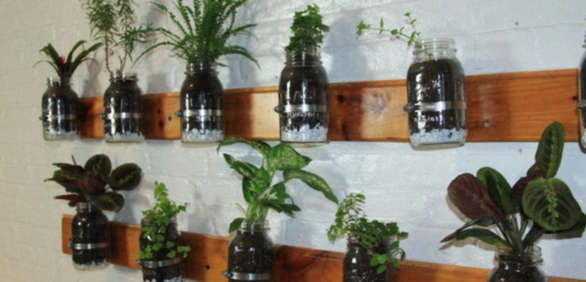 Een kruidentuin aan je muur  voordemakersnl