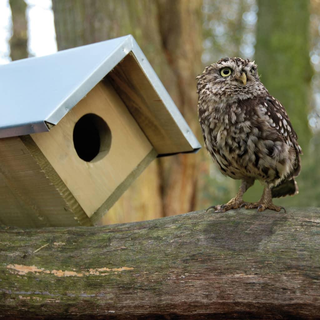garden chair covers the range universal cheap esschert design little owl nesting box 80.5x31x52 cm nk44 | vidaxl.co.uk
