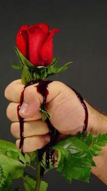 Rose_Blood