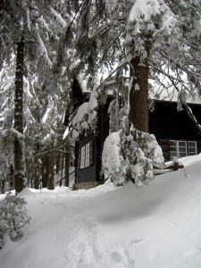 Cabana lui Noica (sursa: wikipedia)
