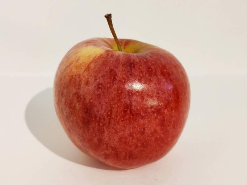 Image dénotative d'une pomme