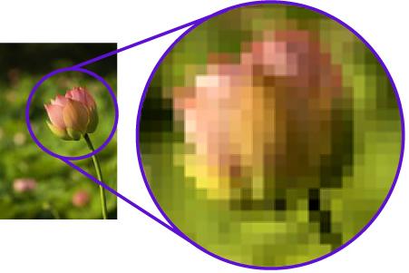 Image result for bitmap image