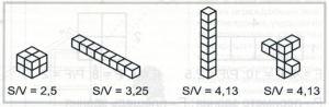 Сравнительное соотношение S / V
