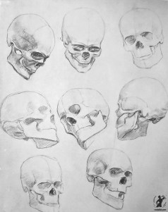 Drawing In The High Art School book - pencil skull draft