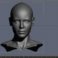 3d model of the Veda's head before using PointCache modifier in 3dsmax