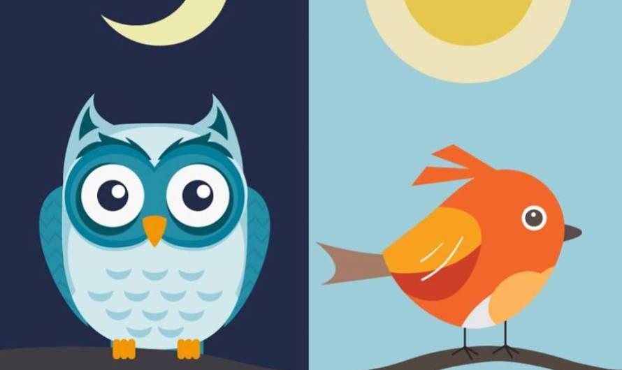 Ranné vtáča alebo nočná sova