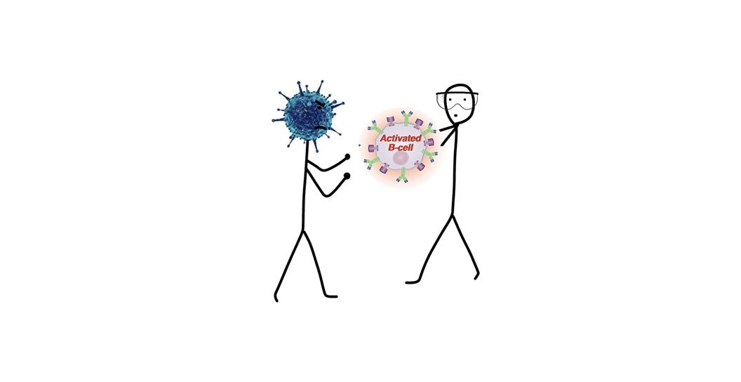 anticovid